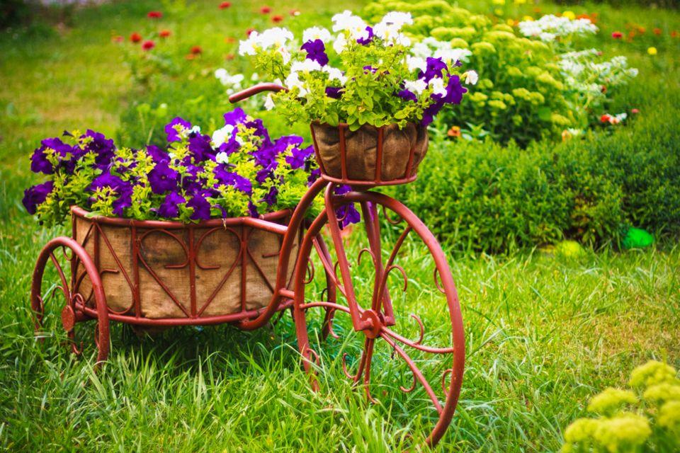 Garten dekorieren: Fahrrad im Garten mit Blumen