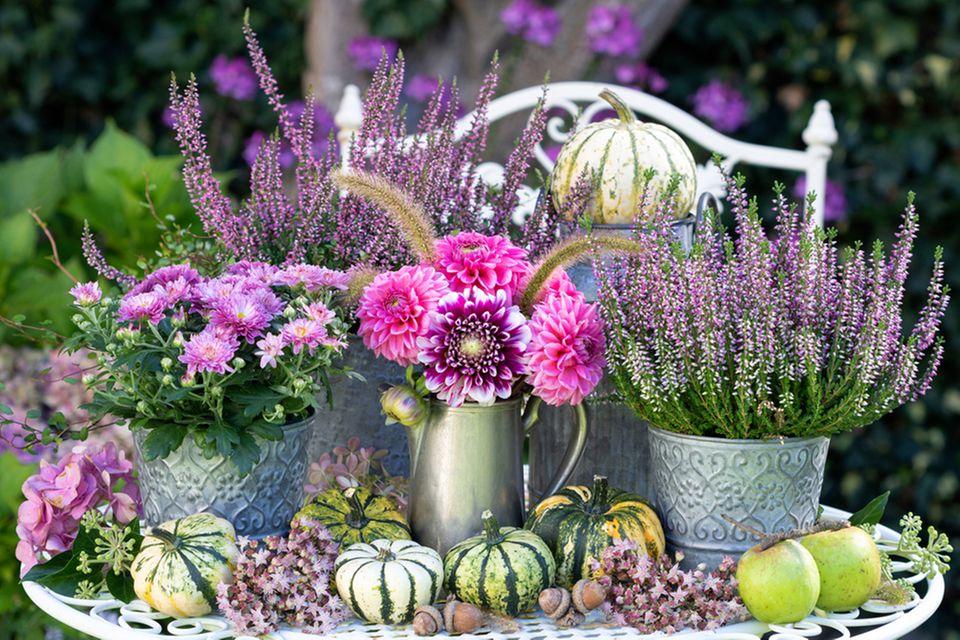 Garten dekorieren: Tisch im Garten mit Blumentöpfen