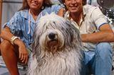 Haustiere: Anke Engelke, Bobtail Wuschel und Benny Schnier