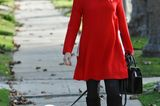 Haustiere: Gwen Stefani mit Zwergspitz