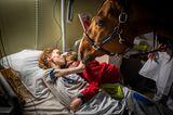 World Press Photo 2021: Frau mit Kind und Pferd im Krankenhaus