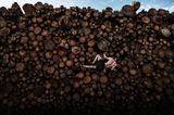 World Press Photo 2021: Mann klettert an Holzstämmen
