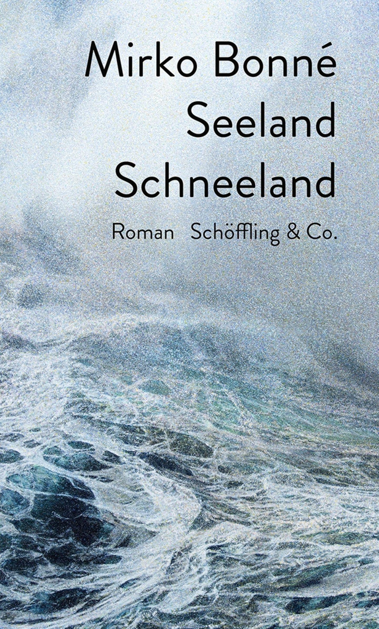 """Buchtipps der Redaktion: Buchcover """"Seeland Schneeland"""""""