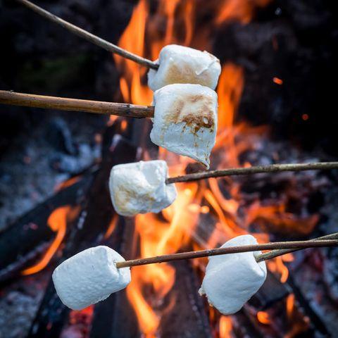 Marshmallows grillen: Marshmallows über dem Lagerfeuer