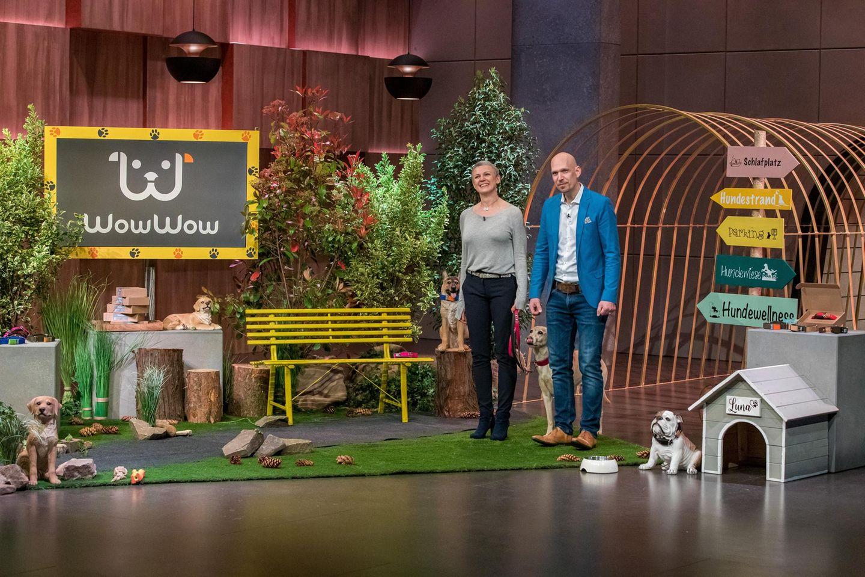"""WowWow: Das Hundehalsband aus DHDL im Test, Gründer von WowWow bei """"Die Höhle der Löwen"""""""