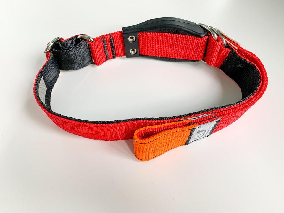 WowWow: Halsband mit integrierter Leine, Freisteller vom WowWow-Halsband
