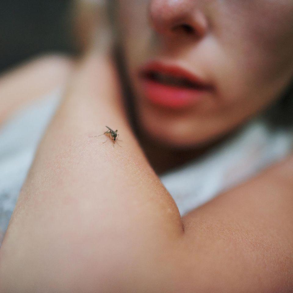Enthüllt: Eine Frau mit einer Mücke auf dem Arm