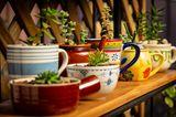 Terrassen-Deko selber machen: Pflanzentöpfe aus alten Tassen