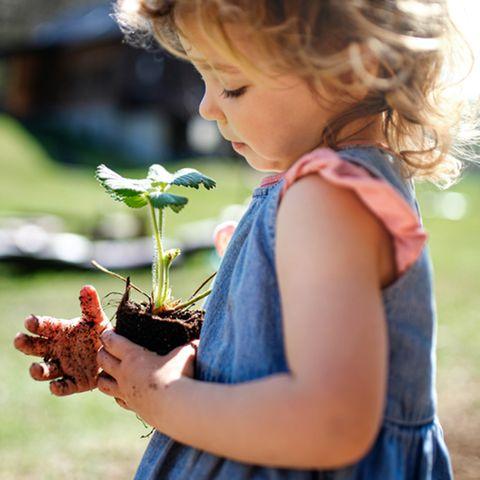 Gärtnern mit Kindern: Mädchen hält Jungpflanze in den Händen