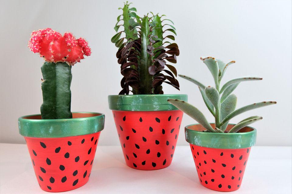 Blumentöpfe bemalen: Blumentöpfe mit Melonen-Muster