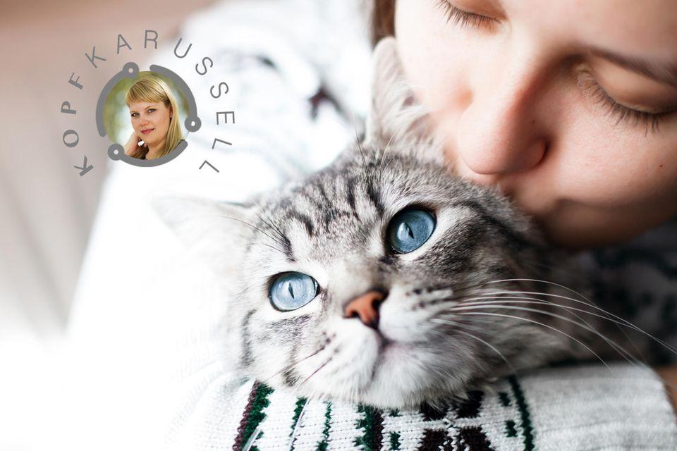 Kopfkarussel: Katze mit ihrem Frauchen