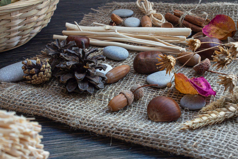 Basteln mit Naturmaterialien: Naturmaterialien auf dem Tisch