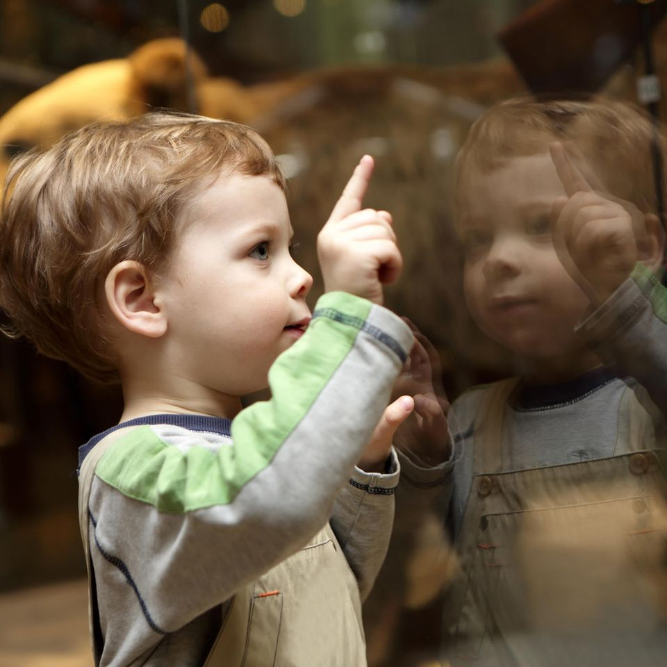 Sonderzahlung ab August: Neugieriger Junge im Museum
