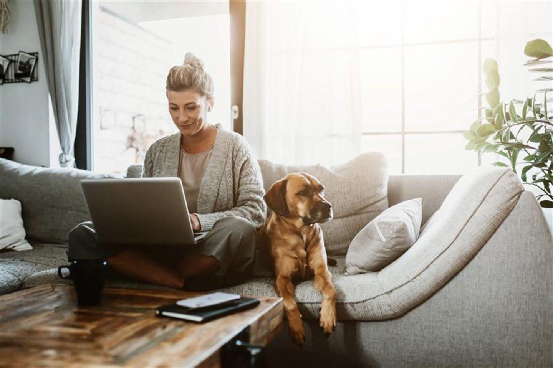LinkedIn: Frau sitzt auf dem Sofa und schreibt auf ihrem Laptop