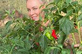 Gärten der Promis: Sonja Kirchberger hinter Pflanzen