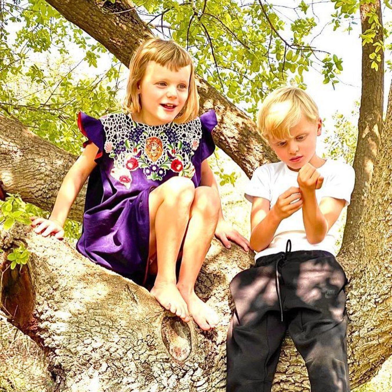 Royale Kinderfotos: Prinzessin Gabriella und Prinz Jacques von Monaco auf Baum