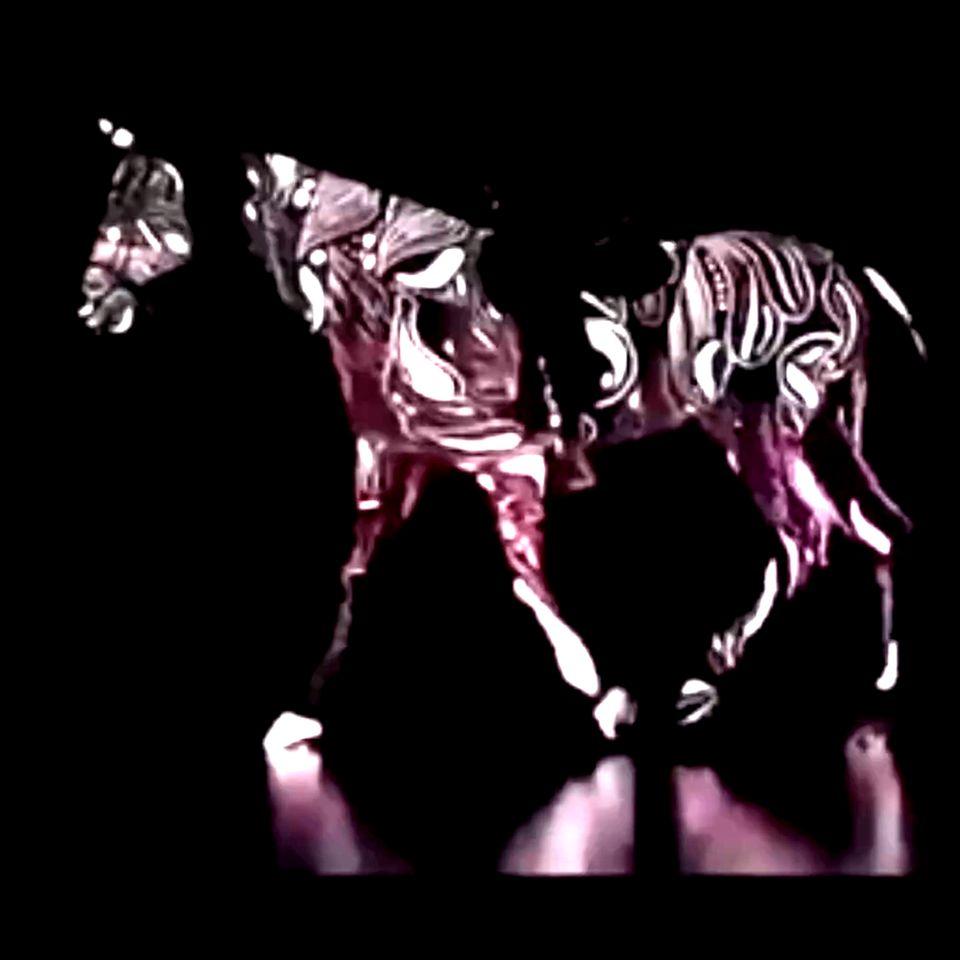 Persönlichkeitstest: Pferd vor schwarzem Hintergrund