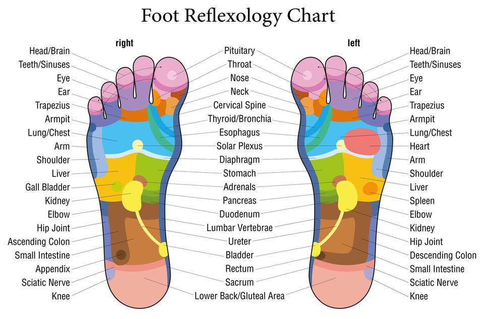 Fußreflexzonenmassage: Grafik der Fußreflexzonen