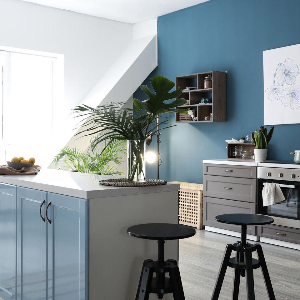 Küche einrichten:: Guidos beste Tipps