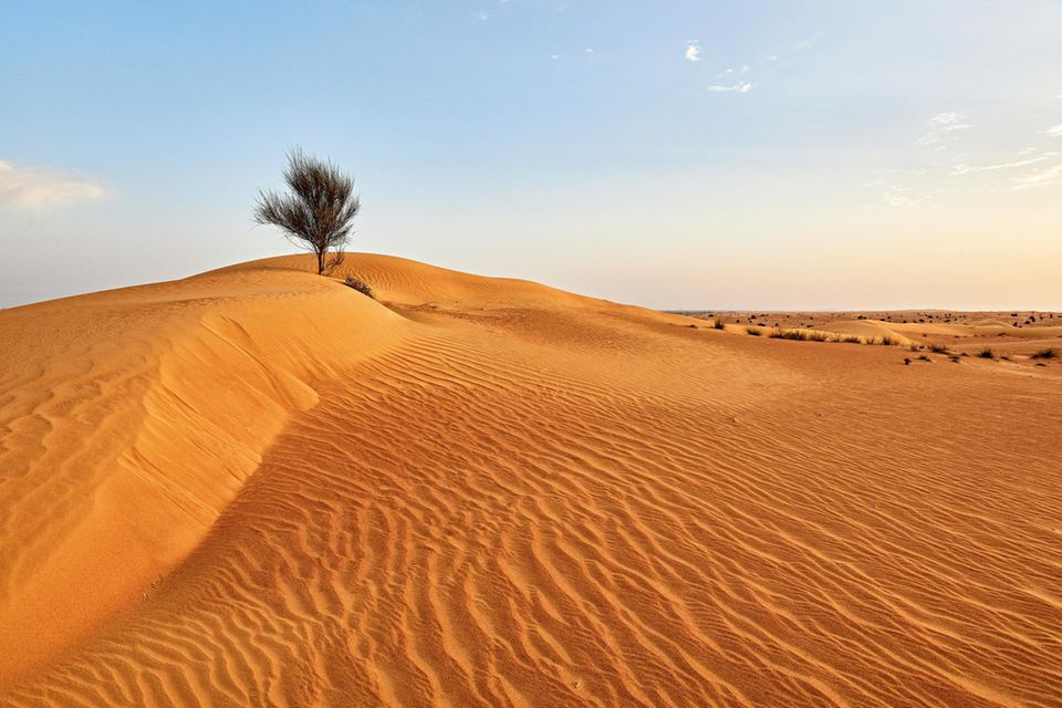 Dubai: Wüste in Dubai