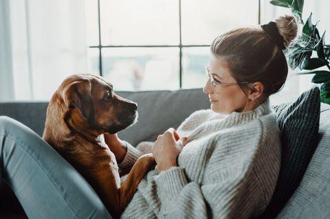 Darum sind Haustiere gut für die Gesundheit